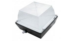 A LED Garage Canopy Light